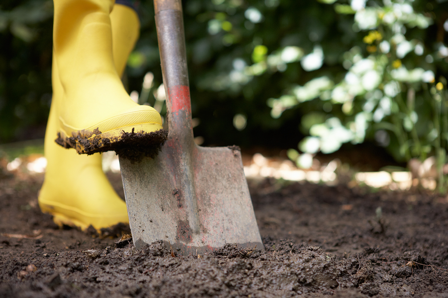 bigstock-Person-digging-in-garden-24567146